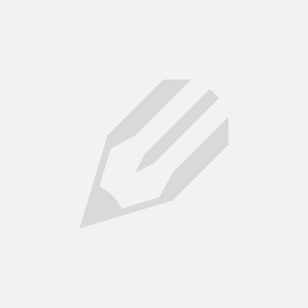 Булерьян Брест — дровяное конвекционное оборудование от производителя